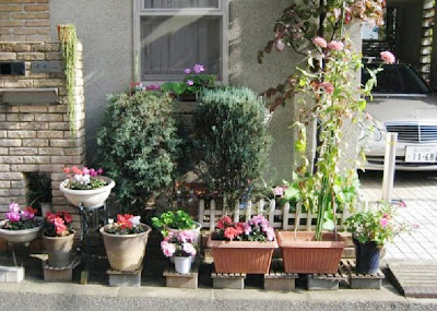 Potted Gardens Hello sandwich tokyo potted garden tokyo potted garden workwithnaturefo