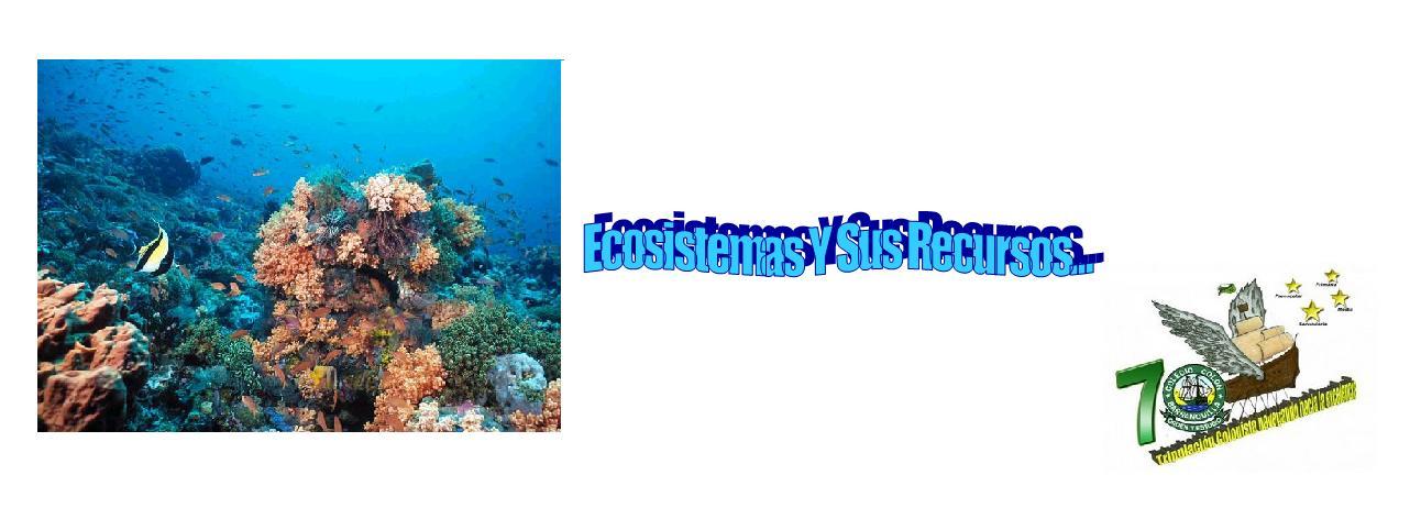 Los Ecosistemas Y Sus Recursos