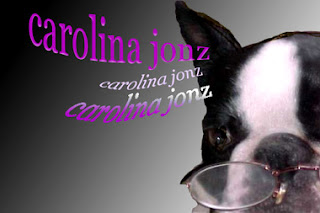 carolina photoshopped wishie dog in winter 2005