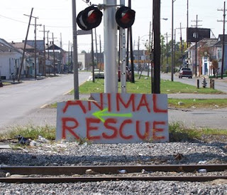 LA SPCA animal rescue sign -- 2005 Katrina