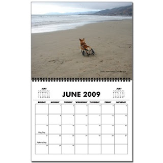 Wheelcorgis 2009 wall calendar - June