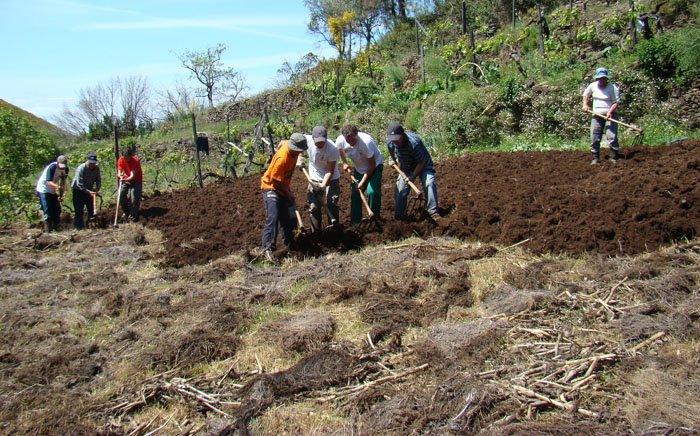 Agricultura Familiar Tradicional