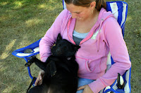 A Schipperke Relaxes on Her Owner's Lap
