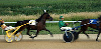 Trotting Standardbreds at Running Aces