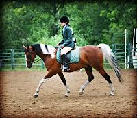 Hunt Seat Pinto Horse Lomo Effect