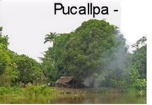 Pucallpa Jungle reached by boat or plane