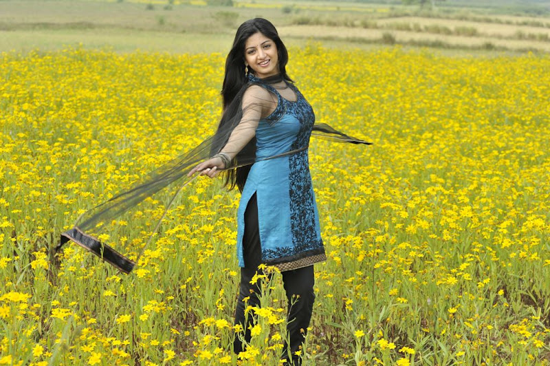 Poonam Kaur New Hot Stills from Nagavalli Movie Photoshoot images