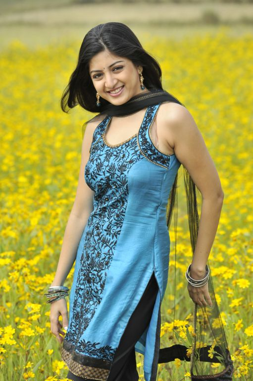 Poonam Kaur New Hot Stills from Nagavalli Movie navel show