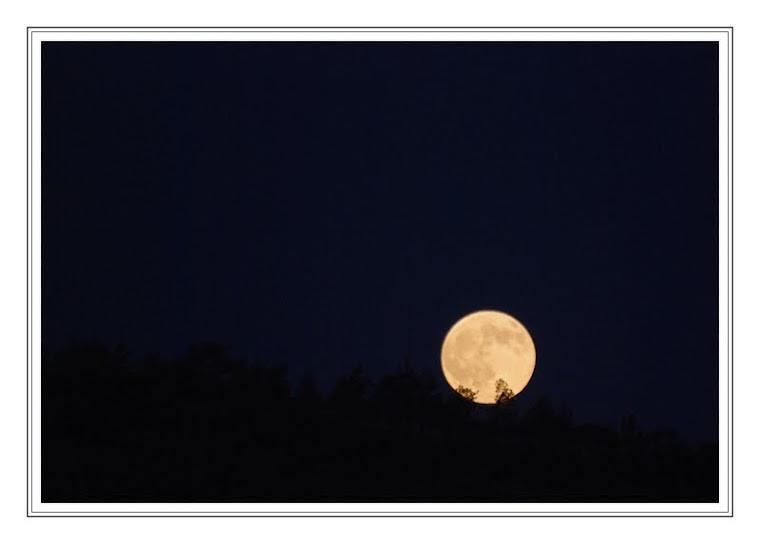 283 - Ay büyürken uyuyamam...