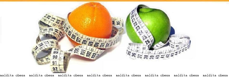 Maldita obesa