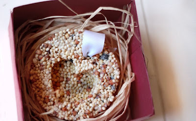 Thrifty gifts:: bird seed ornaments (for outdoor use) Seed+ornaments+4