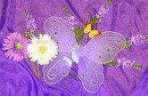 Butterflykisscrochet