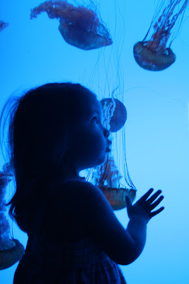 Gabi & the Jellies