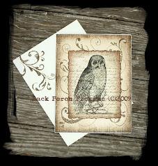~Vintage Owl Card~