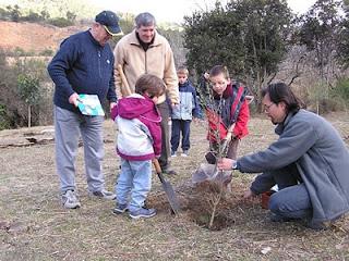 Festa de l'arbre 2005