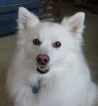 Macy (2002-2008)
