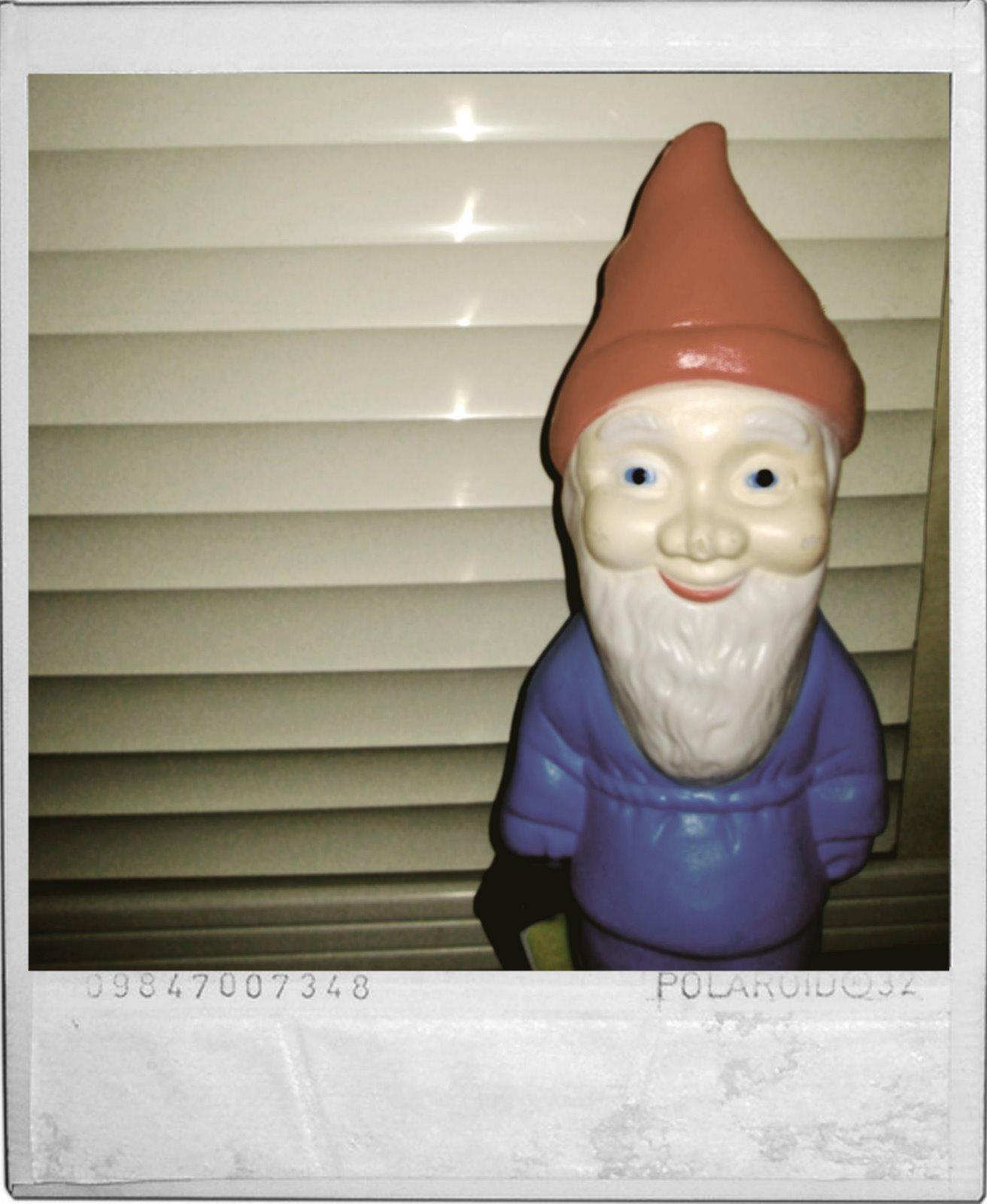 [gnome+polaroid]