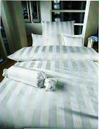 Producator perne pentru hotel