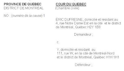 Information Justice Se Representer Soi Meme Devant Un Tribunal 6 La Requete Introductive D Instance
