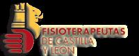 COLEGIO PROFESIONAL DE FISIOTERAPEUTAS CYL