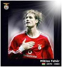 O Eterno Miklos Fehér