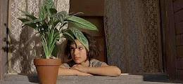 De Plant Partij