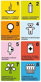 Objetivos  del Milenio.