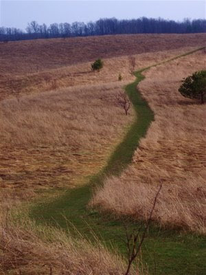 A desire path (or desire line) is a path developed by erosion caused by ...