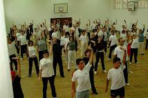 Cursos e Actividades 2012