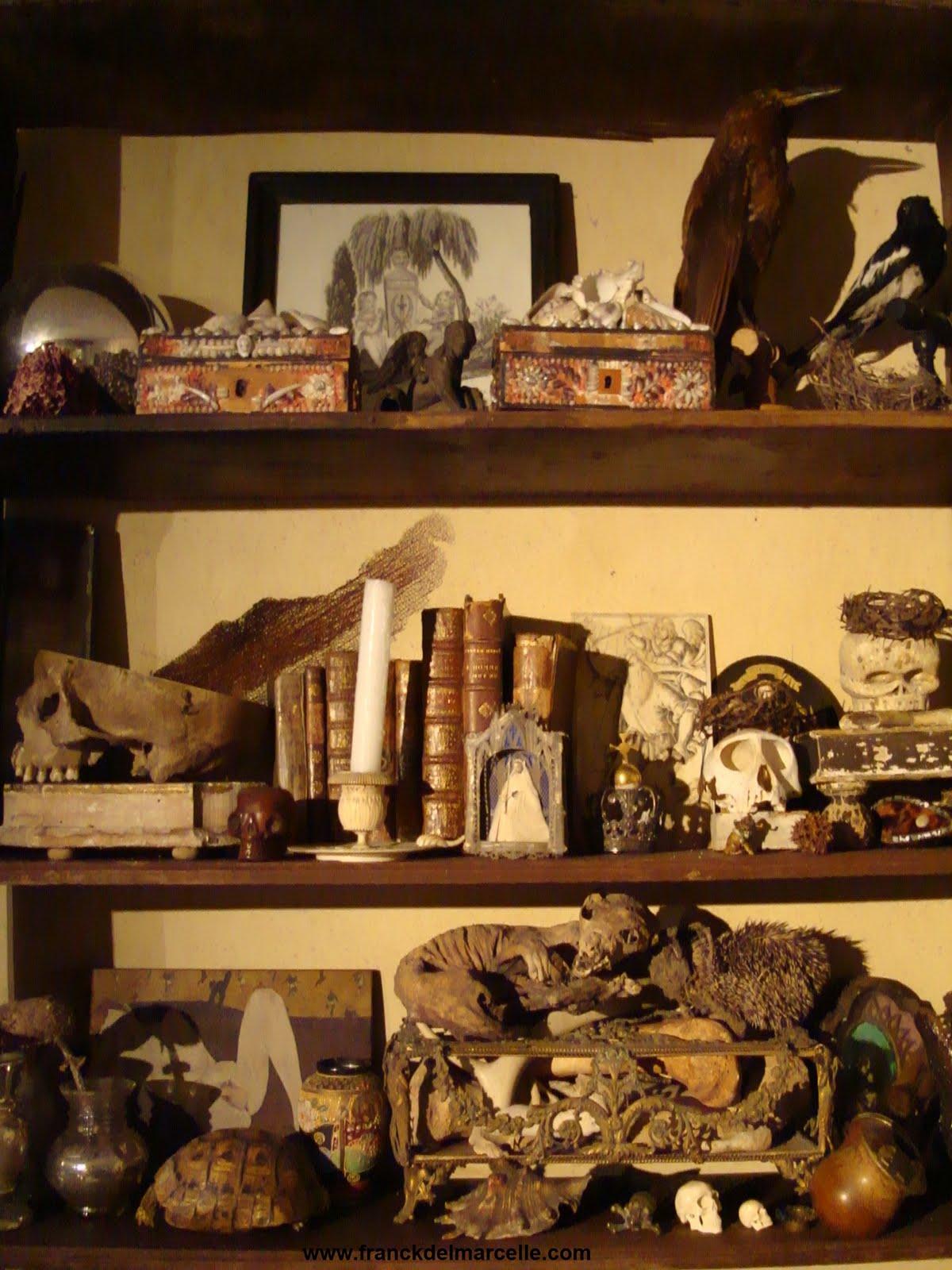 Cabinet de curiosit s franck delmarcelle - Meuble cabinet de curiosite ...