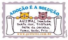 NÃO ABANDONE OS ANIMAIS!