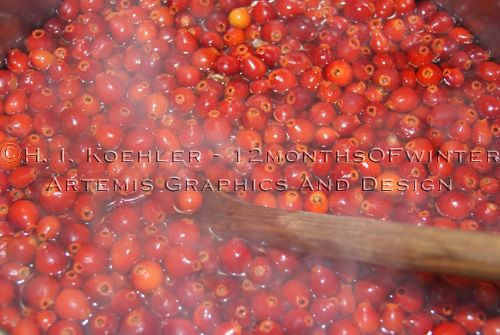 Artemis 12monthsofwinter making rose hip jelly part 1 - What to do with rosehips jelly and vinegar ...