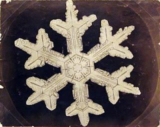 fotomiografia20 feita por wilson a bentley de um floco de neve_cristal de neve