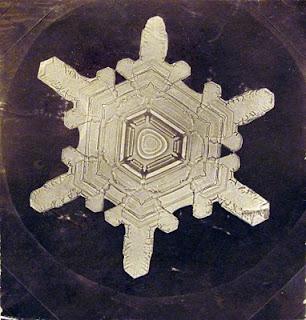 fotomiografia16 feita por wilson a bentley de um floco de neve_cristal de neve