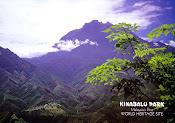 Mountain Kinabalu