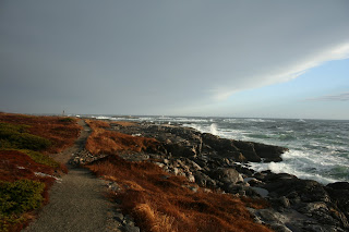 Newfoundland sea kayaking the harvey trail isle aux morts for Ocean isles fishing village