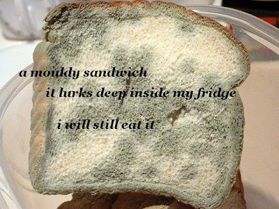 A mouldy sandwich/It lurks deep inside my fridge/I will still eat it.