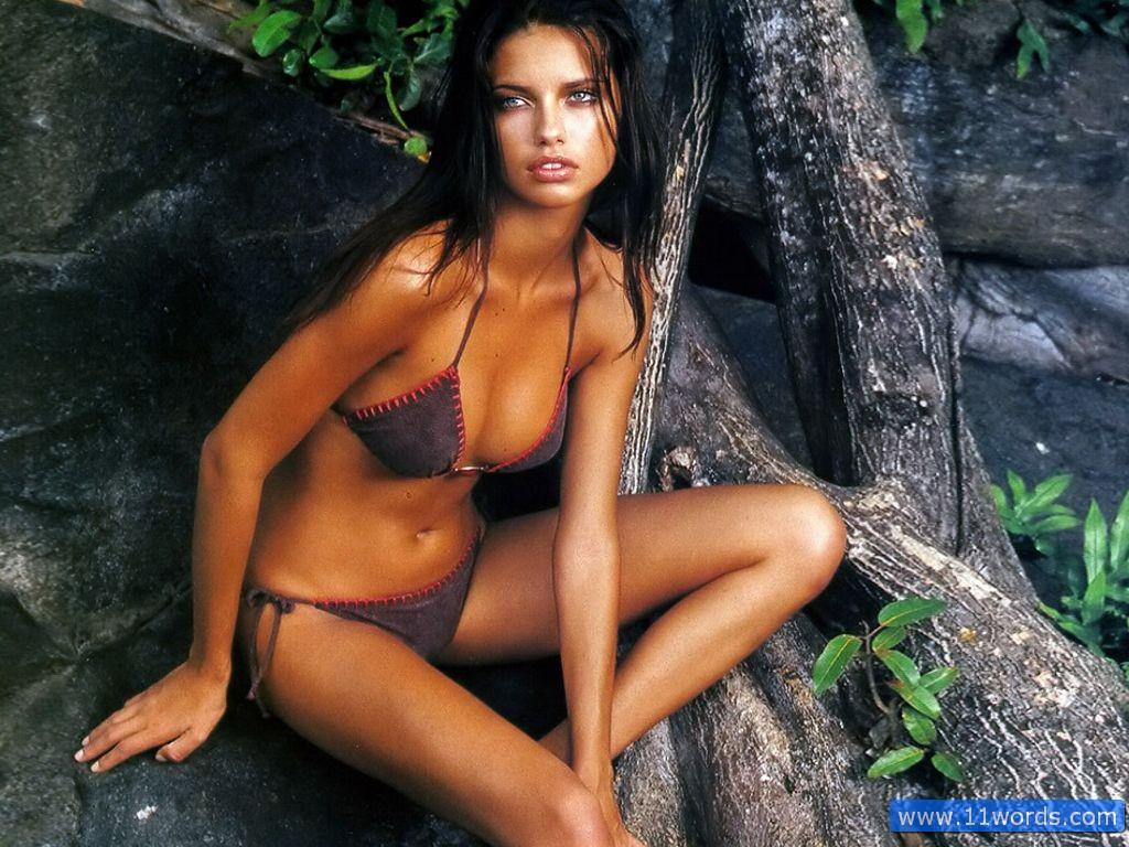 http://2.bp.blogspot.com/_fIBhCtIRiVU/TS2wa0_KSUI/AAAAAAAAEhs/kCNIh7W_llA/s1600/Sexy-Adriana-Lima-116.jpg
