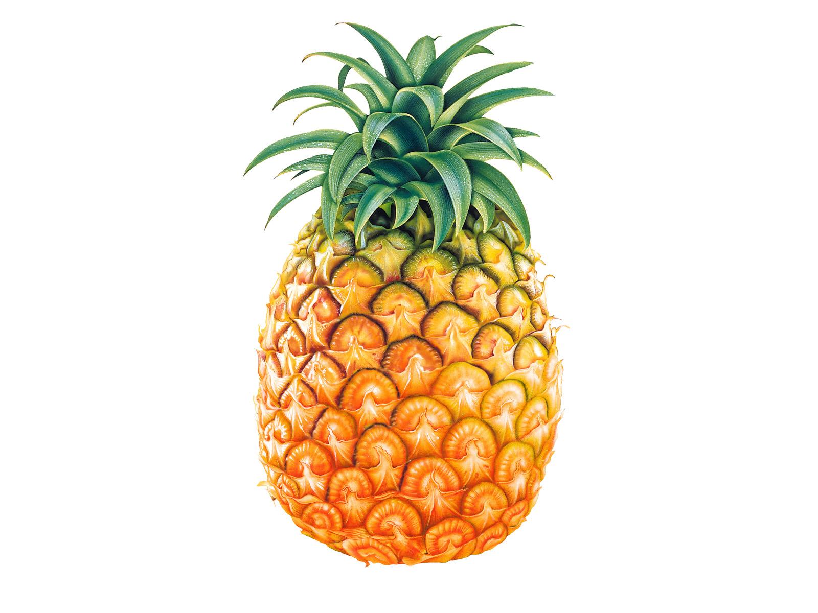 http://2.bp.blogspot.com/_fIIBIseadYg/TFFw6D7aWUI/AAAAAAAAAVY/cE72ali8-ls/s1600/pinapple-fruit_wallpapers_13079_1600x1200.jpg