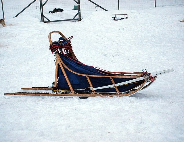 Dog Training Sleds For Sale