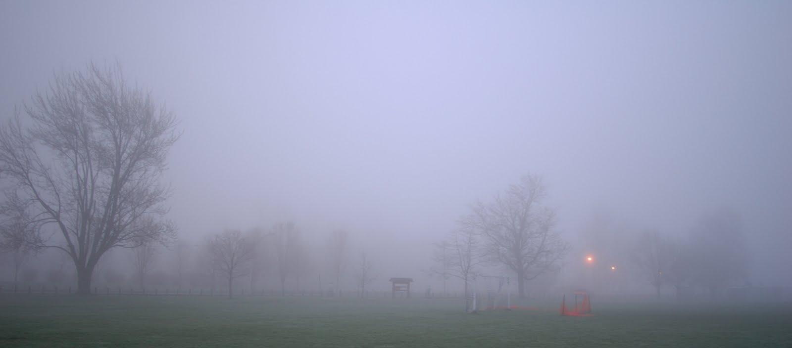 how to clear foggy head