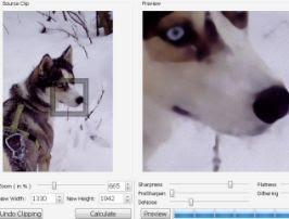 Ingrandire foto e immagini