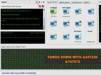 attacco DdoS hacker Wikileaks