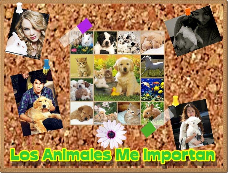 Los Animales me IMPORTAN