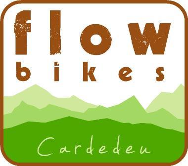 Flow Bikes