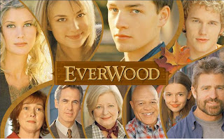 everwood|tv shows