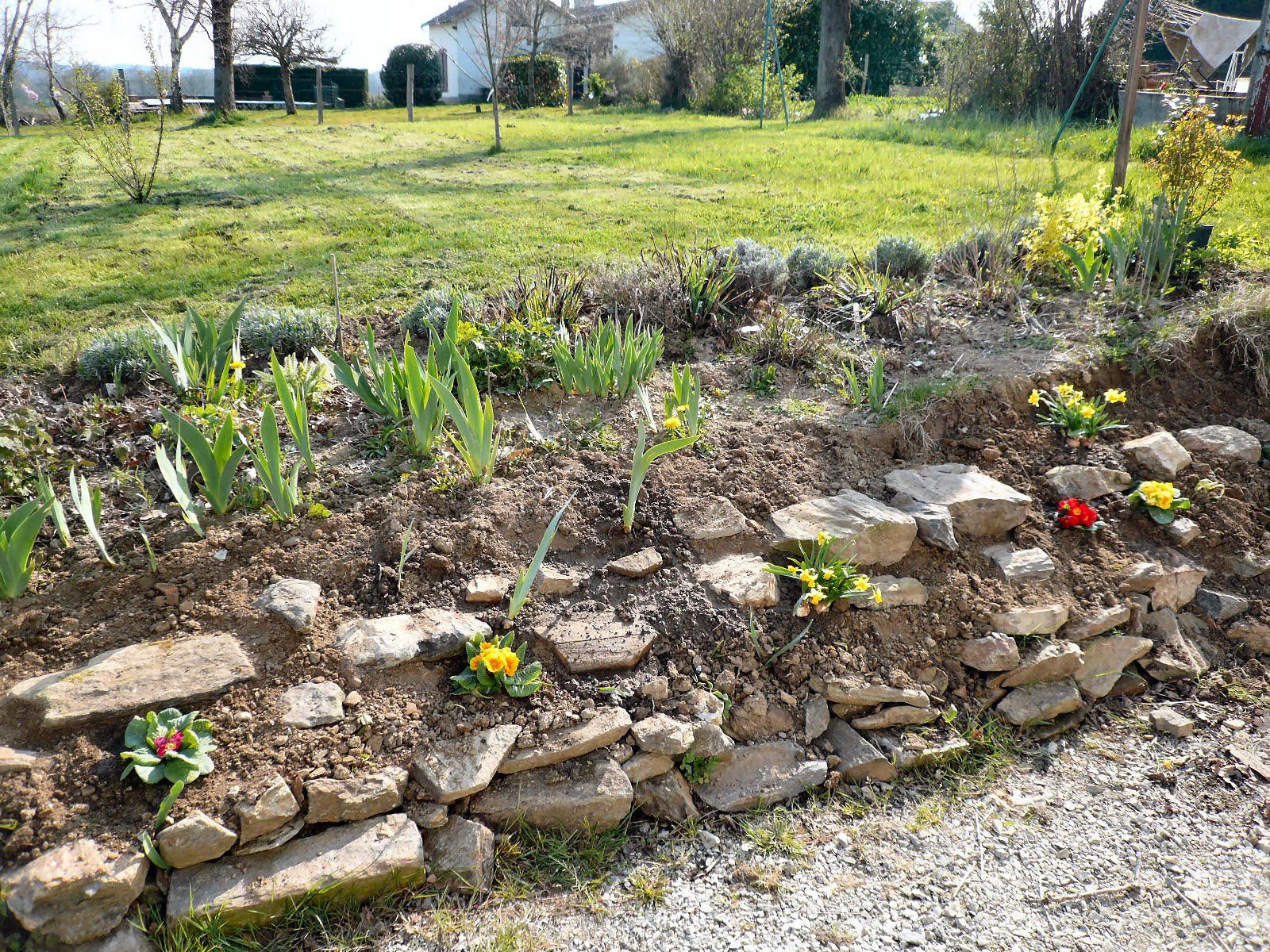 1000 images about rockery gardens on pinterest rockery for Garden rockery designs
