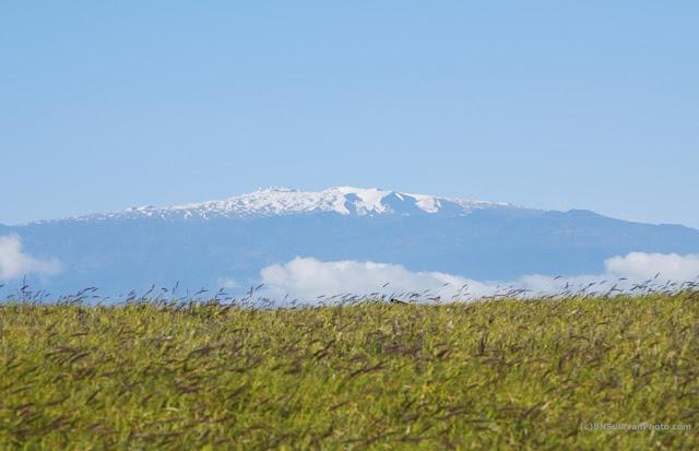 Mauna Kea with snowcap