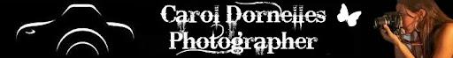 ::Carol Dornelles:: O diário de uma fotógrafa descolada!