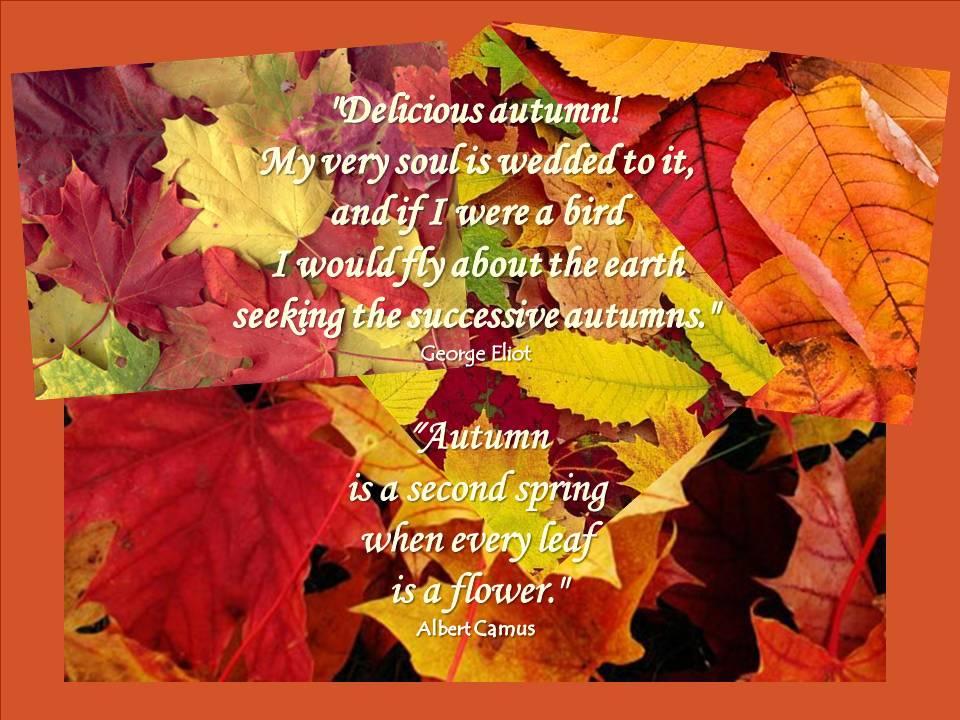 Seasonal Soundings: Welcome, Autumn!